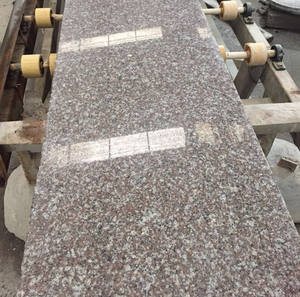 chinese wholesale Cheap price New Polished Pink Porrno Granite G664