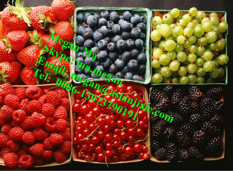 industrial professional straw berry sorter/strawberry sorting machine
