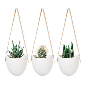 Amazon DDP hot sale in ins hanging ceramic pots home decoration