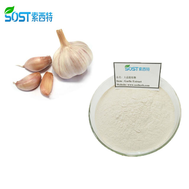 SOST Wholesale Organic Feed Grade Dehydrated Allicin Garlic Powder