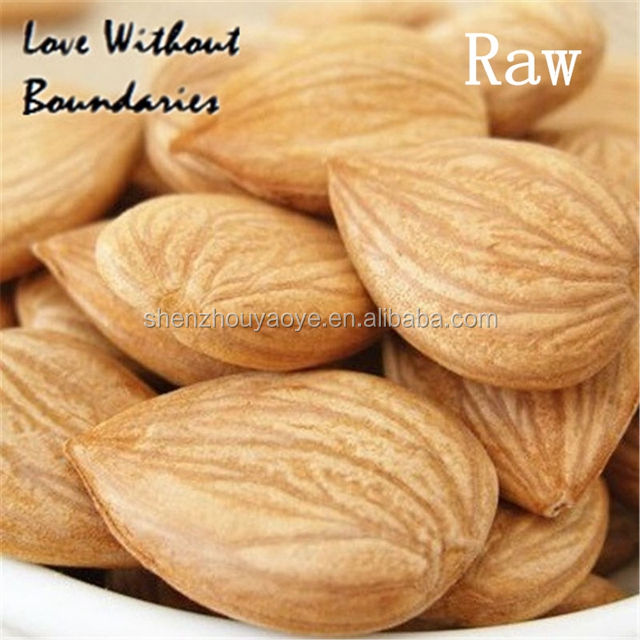 100% Organic Raw Apricot Kernels For Health Food or Medicine