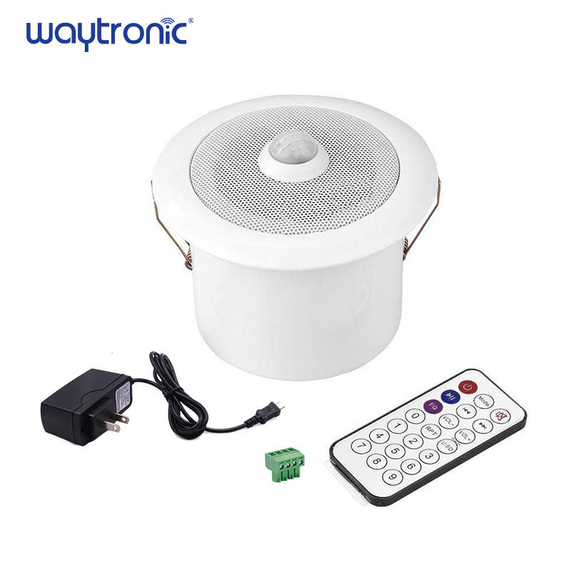 MP3 Downloadable Decke PIR Infrarot Motion Sensor Aktiviert Sound Player