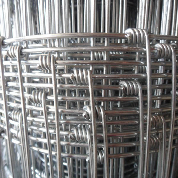 Factory supply cheap field wire mesh cattle fence, deer fence,cheap farm wire mesh fence