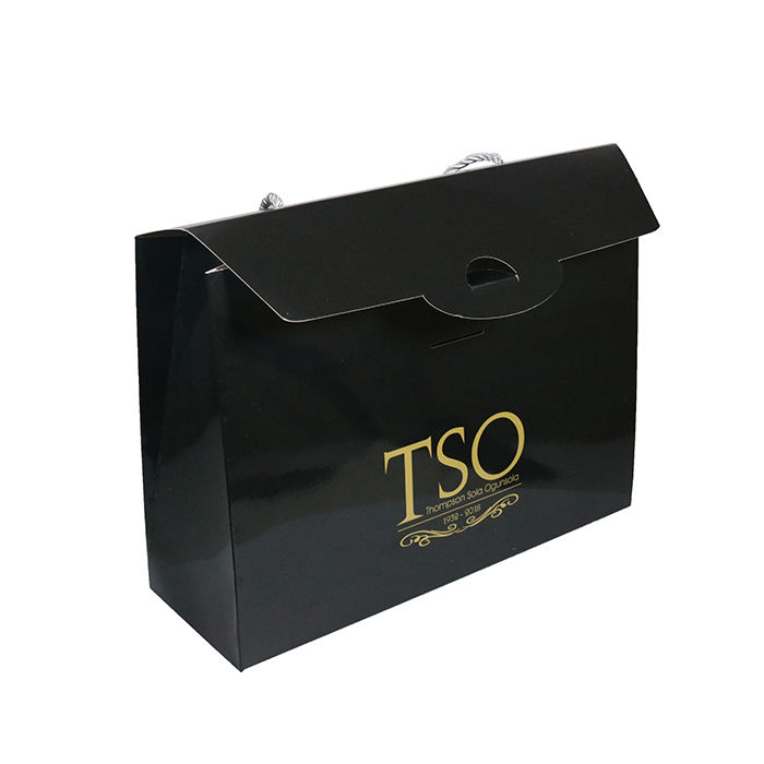 Luxury Box Type Paper Bag With Custom Printed Eco Glossy laminated Art Paper Bag Carry Shopping Use