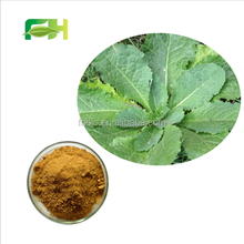 Natural Wild Lettuce Extract Powder, Opium Lettuce Extract Powder, Opium Lettuce Extract