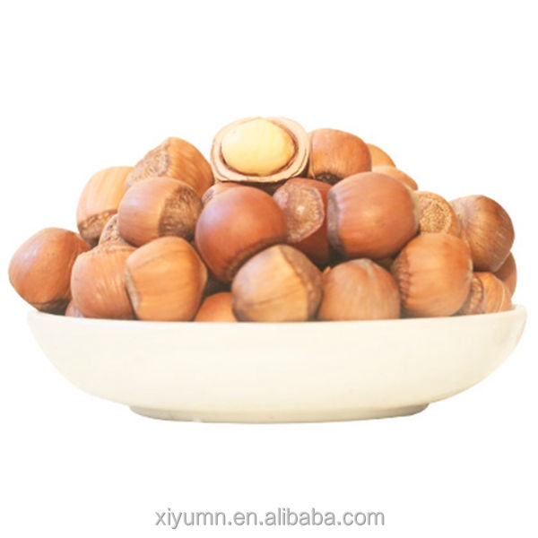 Top quality in bulk nuts in shell roasted hazelnuts