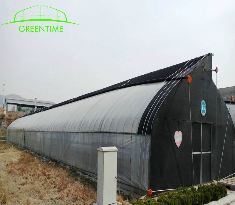 Shouguang greenhouse for planting mushroom greenhouse