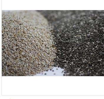 High Quality Chia seed Organic