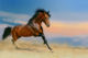 Painting Art And Painting Wholesale Modern Wall Art Running Horse Painting Canvas Prints