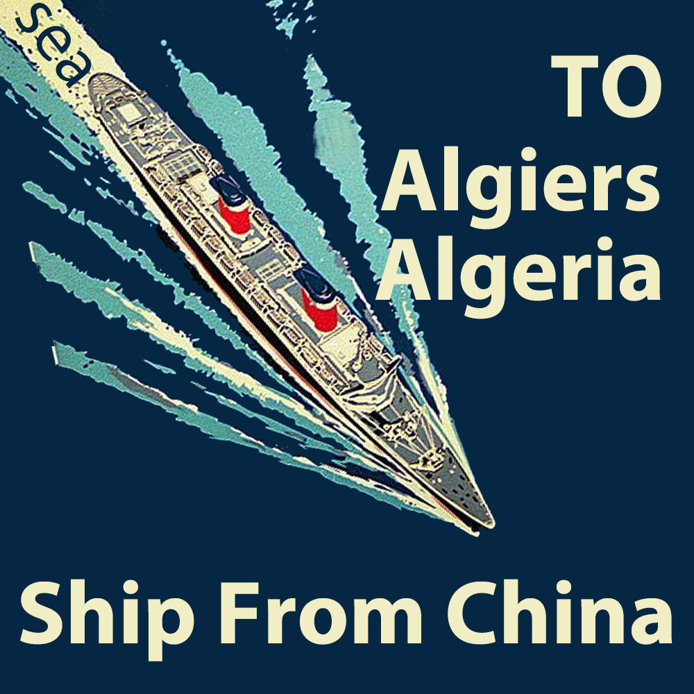 Sea Freight Shipping Companies To Algeria Algiers Load in Shenzhen China Shipping To Algeria