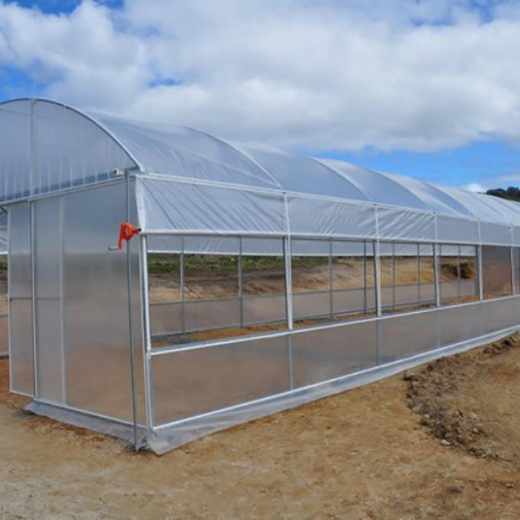 Simple structure and economic high quality pe film green house