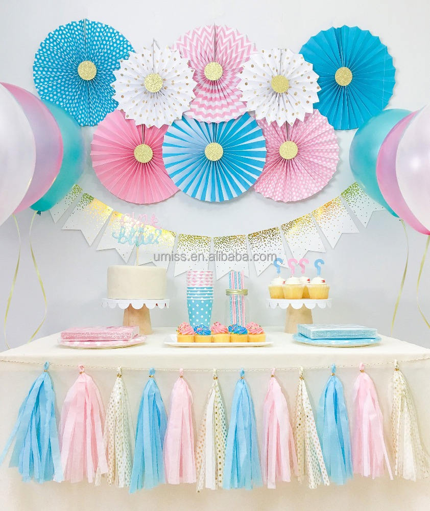 UMISS Gender Reveal Baby Shower , Boy and Girl Twins Birthday Party Decorations, Pink and Blue Party Kit
