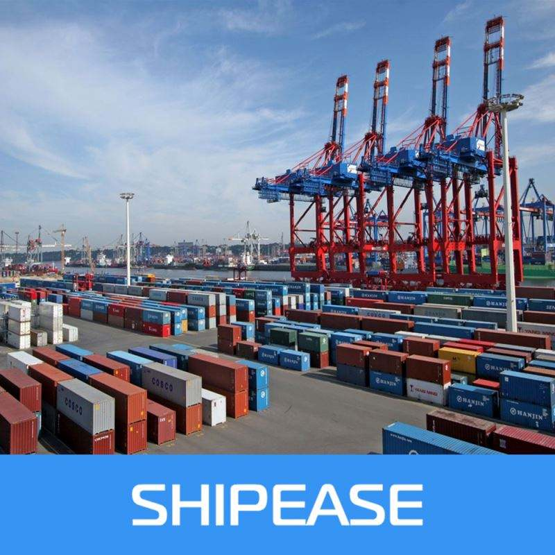 Freight forwarder sea freight shipping to Lirquen,Chile from china,shenzhen/ningbo/shanghai