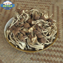 Detan Agrocybe Cylindracea Mushrooms Dried for Sale