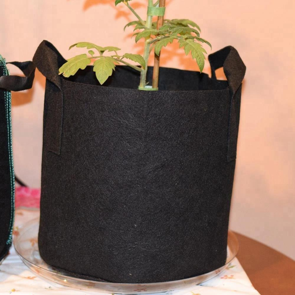 도매 싼 price 1 2 3 5 7 10 gallon smart fabric pots from 공장