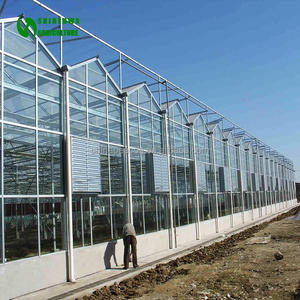 Agricultural Galvanized Steel Frame Glass Greenhouse With Intelligent Control System for cultivation