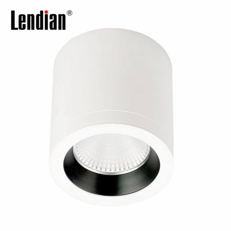 Высокое качество профессионального производства затемнения IP44 поверхностного монтажа светодиодные светильники 15 Вт