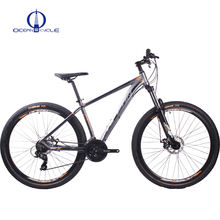 Gray Bicycle Alloy frame MTB bike 29er inch Half-Alloy lockable fork 21 speed cycle Mountain bike