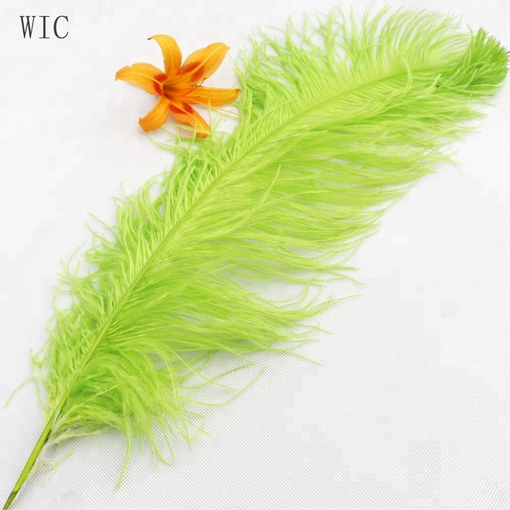 Wholesale dyed feather 12-14inch Ostrich Feathers for decoration