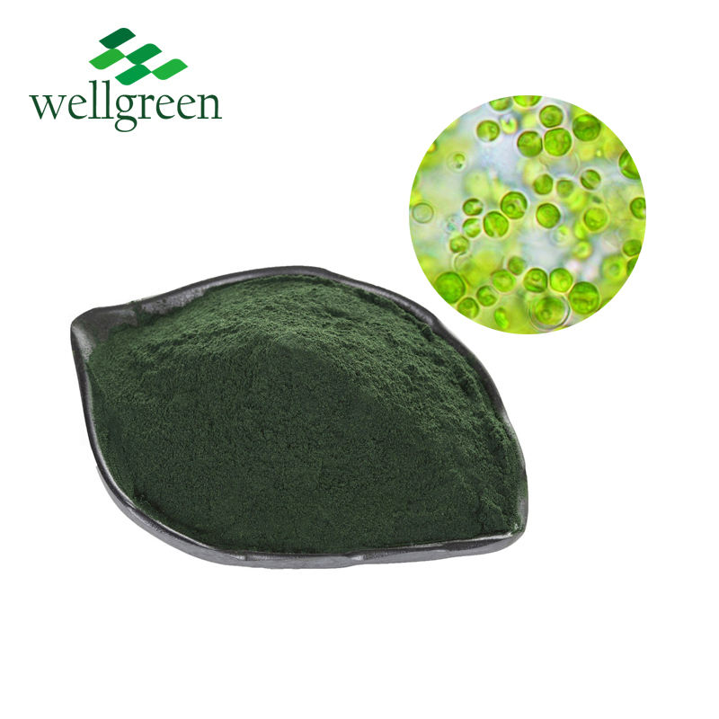 Natural Food Supplement Dry Spirulina Powder / Chlorella Algae Powder for animals