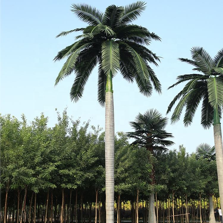 Environmentally friendly Anti-fading Customize Decorative Royal Palm, Artificial Plastic Palm Tree For Outdoor