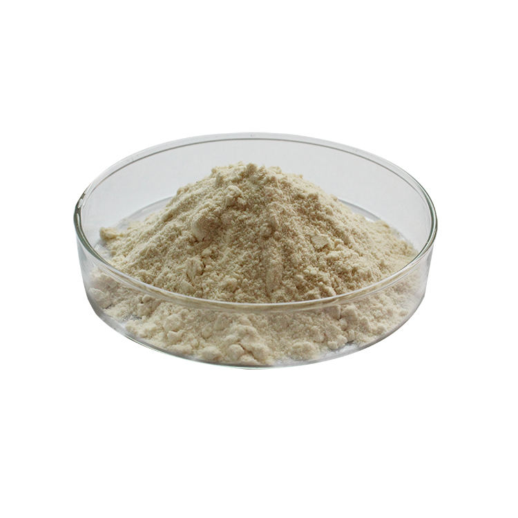 100% Pure Bulk Royal Jelly Freeze Dried Powder