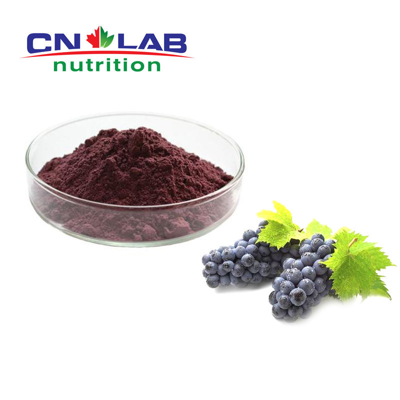 100% natural high quality grape seed extract 95% grape seed extract powder