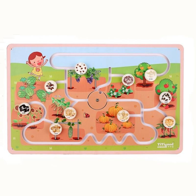 PVC Trackable Board With The Magic of Seed Resin Block Kids Playing Biology Board