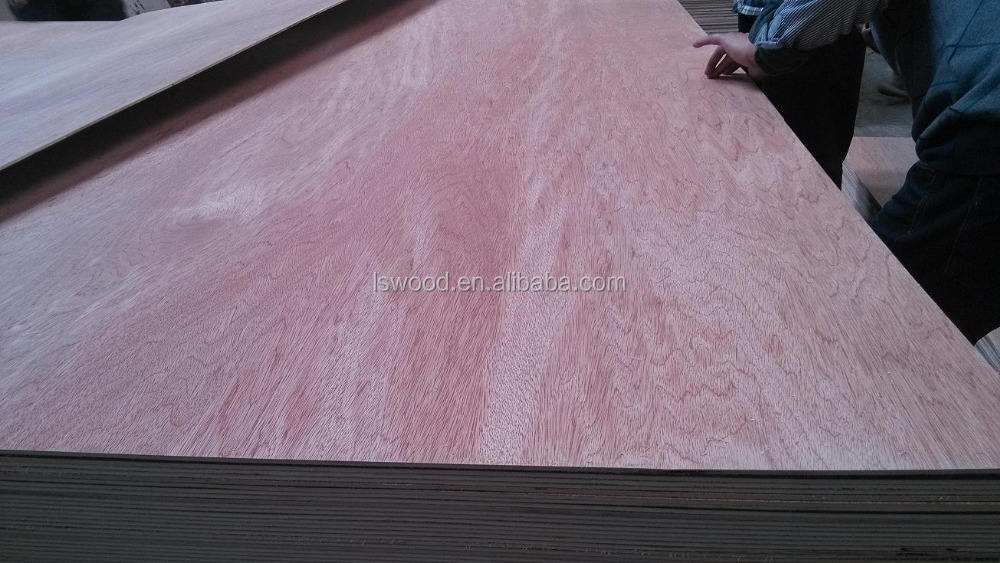 Poplar Plywood Commercial Plywood 18mm Bintangor Poplar Plywood