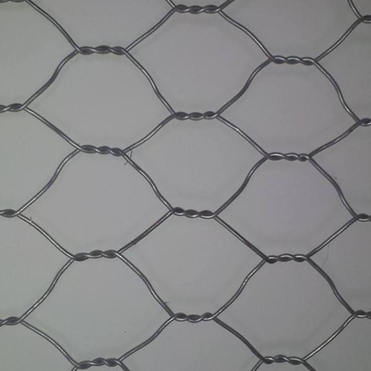 chicken wire Astone Wire netting 25mm, 5m x 600m