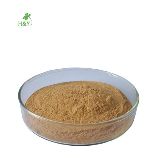 High quality natural L-dopa Mucuna Pruriens Extract