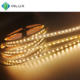 IP65 IP67 IP68 waterproof silicon sleeve 3528 2835 5050 DC 12V 24V 120 leds per meter flexible led strip light