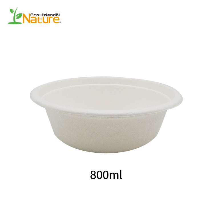 Custom various size clear disposable sugarcane pulp hot soup salad bowls