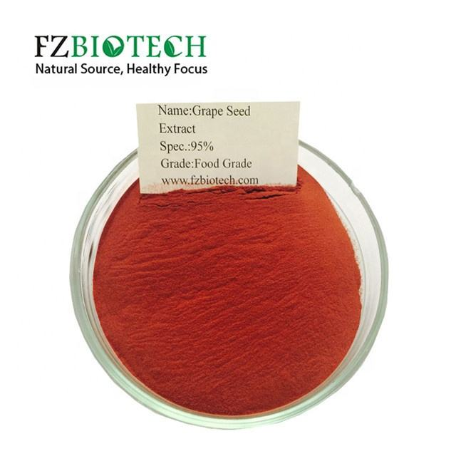 FZBIOTECH Bulk Best Grape Seed Extract Powder 95% Procyanidine