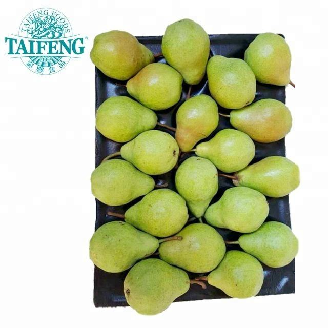 Fresh Ya Pear Chinese Supplier Taifeng Brand