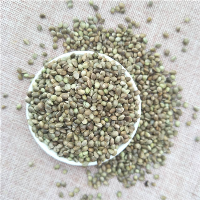 Huo ma ren 2019 new crop oil seeds industrial CBD hemp seeds for planting