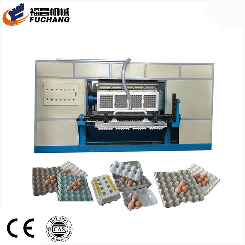 Professional paper pulp molding equipment rotary fast food paper egg tray box making machinery factory