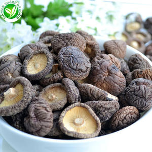 Wholesale cheap healthy dried shiitake mushroom