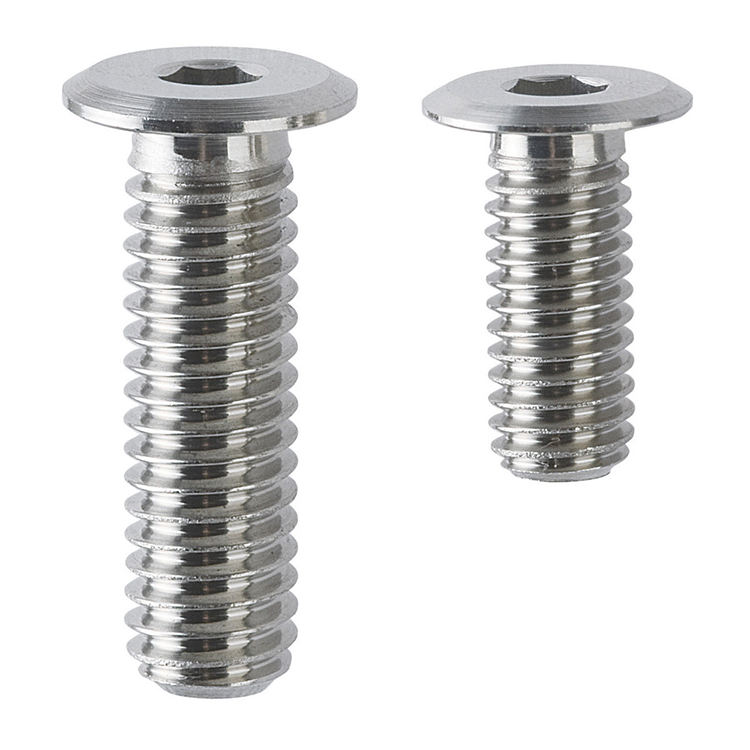 Stainless steel Ultra Low Head Cap Screws Hexagon Socket CBSTSR4