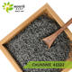 China green tea Zhejiang tea qualite diamant chunmee chun mee 41022 4011