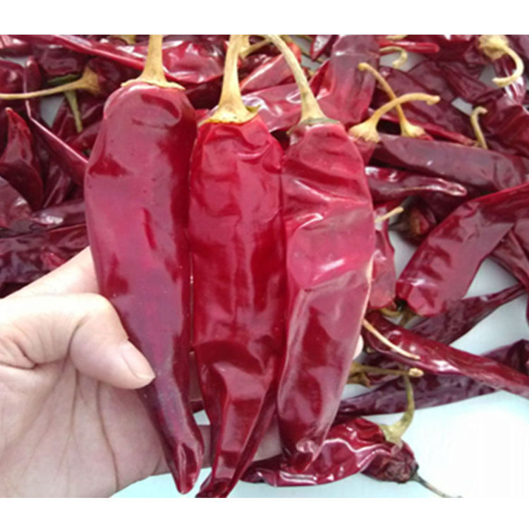 Dry Sweet Red Pepper /Whole Sweet Paprika Pods Dried Red Chili