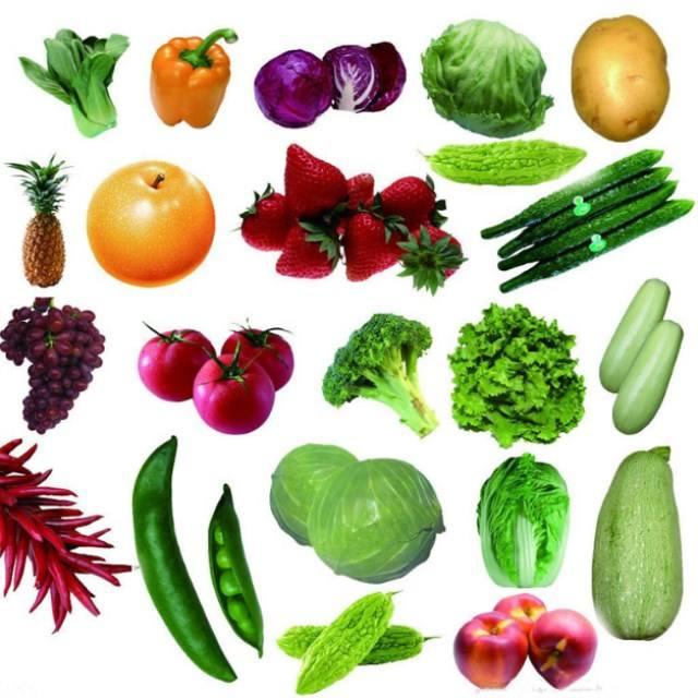 Плоды семена овощи картинки