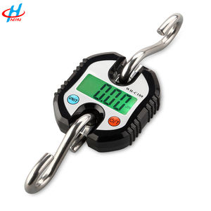 WH-C100 cheap china electronic crane hanging weight scale 150kg