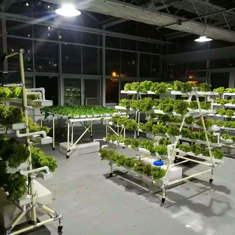 O Projeto especial de Esterilização com efeito de Estufa Para A Agricultura