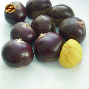 2020 Organic Fresh Chinese Chestnuts for Sale