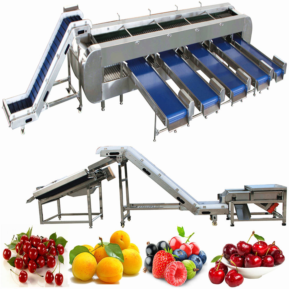 Cherry Processing Equipment Fruits Washing Line for Blueberry Production Machine Mango Cleaning and Sorting Drying Machinery