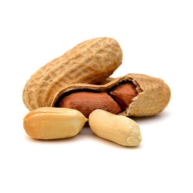 Best-selling exporters groundnuts flavoured peanuts With Shell
