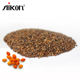 Hippophae-rhamnoides Seeds Sea Buckthorn Very High Vitamin C Content