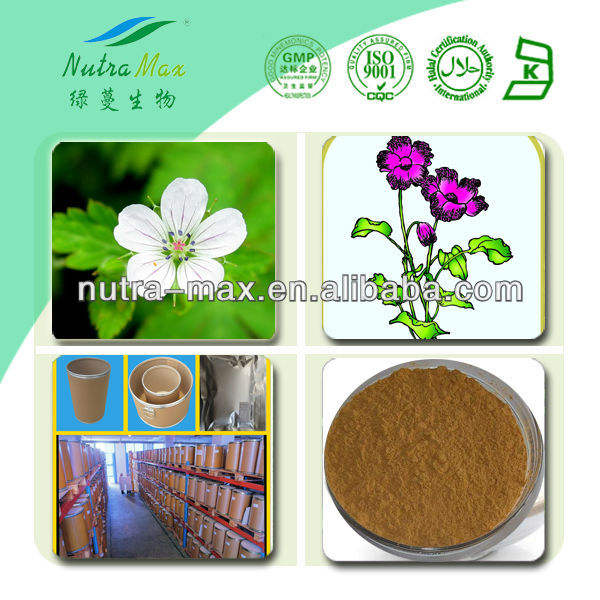 Cung cấp NutraMax - Piper Cubeba chiết xuất / Piper Cubeba chiết xuất bột tự nhiên chiết xuất Cubeba Piper 4:1 5:1 10:1