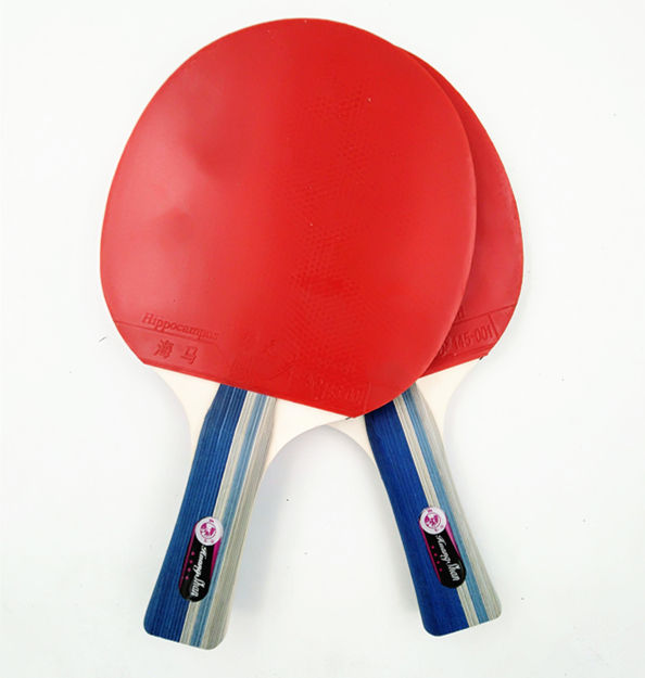 Direct manufacturers selling table tennis racket 4 star table tennis bats